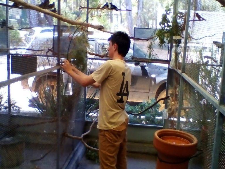 Kanyana Wildlife Centre X-Over Program