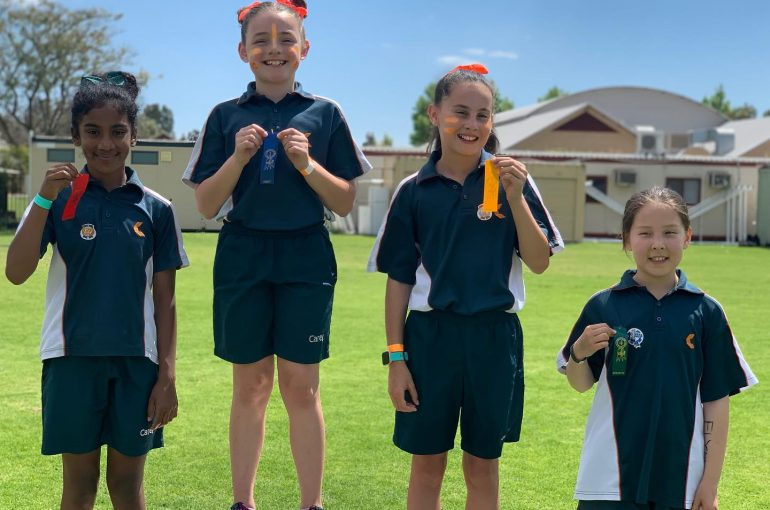 Harrisdale Primary Sports Carnival