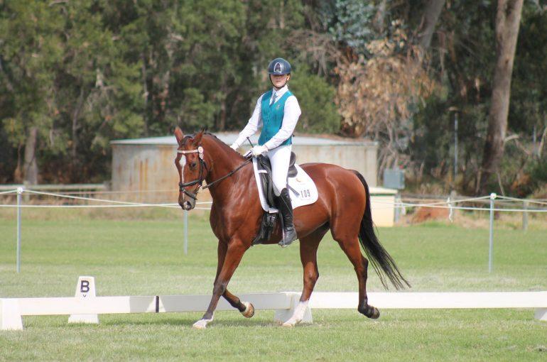 Equestrian Interschool Competition