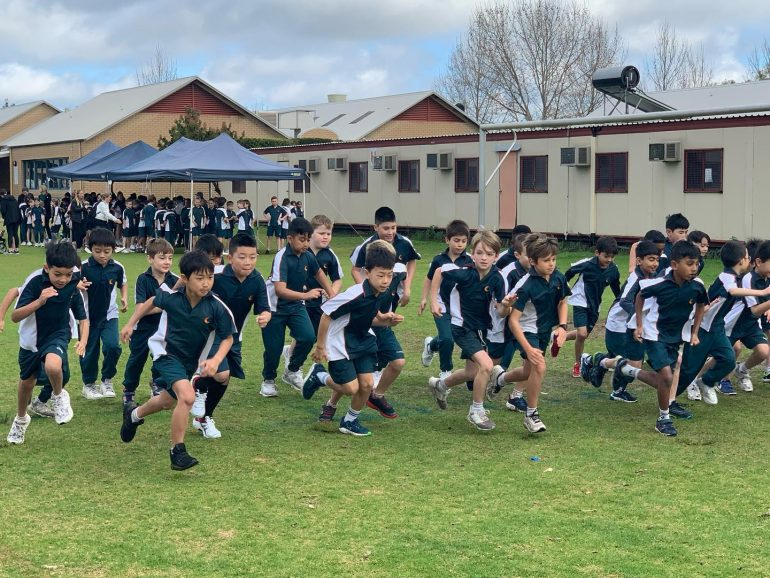Harrisdale Primary Cross Country